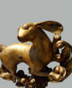 rabbit6