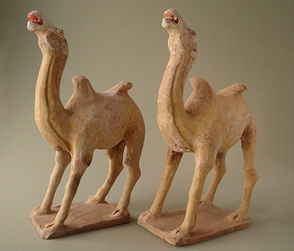 Chinese Pottery Camels – Tang Dynasty (Each Priced At)